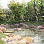 湯の川温泉(ゆのかわおんせん)【島根の温泉情報】