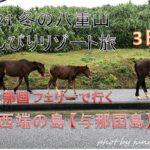 2021年1月 冬の沖縄・八重山でのんびりリゾート旅 3日目【4時間かけて与那国へ 爆風を耐える可愛い馬たち】